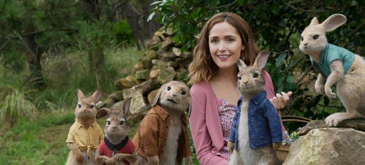 PETER RABBIT WS PICTURE