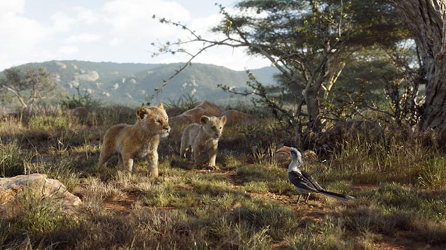 THE LION KING WS PIC 3