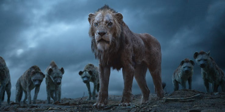 THE LION KING WS PIC 4